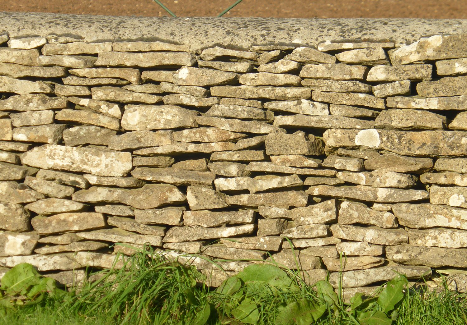 Cotswold Wall